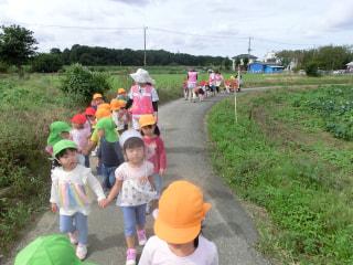 ☆秋の散歩☆