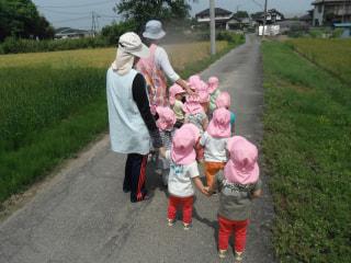 麦畑にお散歩♡
